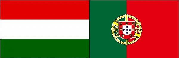 ハンガリーVSポルトガル:ユーロ2016グループリーグF組欧州選手権