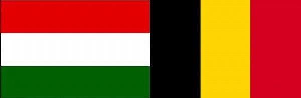 ハンガリー対ベルギー:ユーロ2016決勝トーナメントベスト16