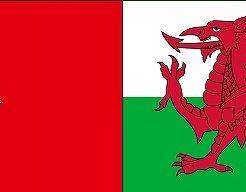 ポルトガル対ウェールズ:ユーロ2016決勝トーナメントベスト4,準決勝