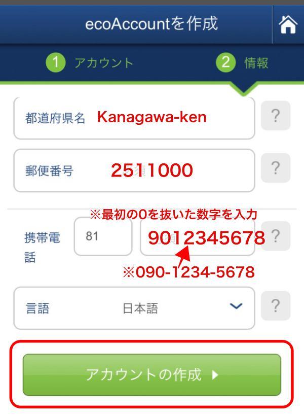 エコペイズ(ecoPayz)モバイル登録6