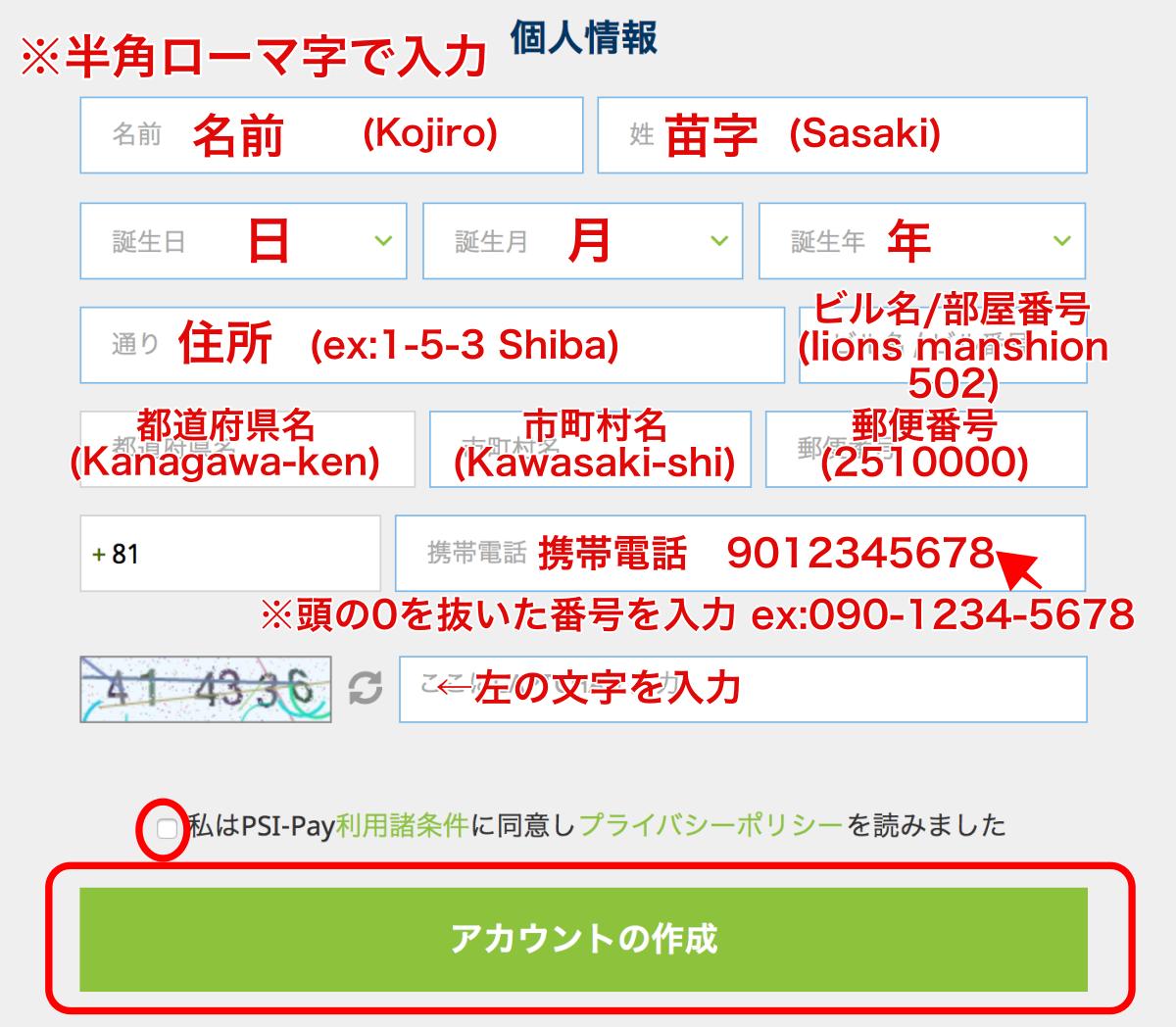 エコペイズ(ecoPayz)登録パソコン3