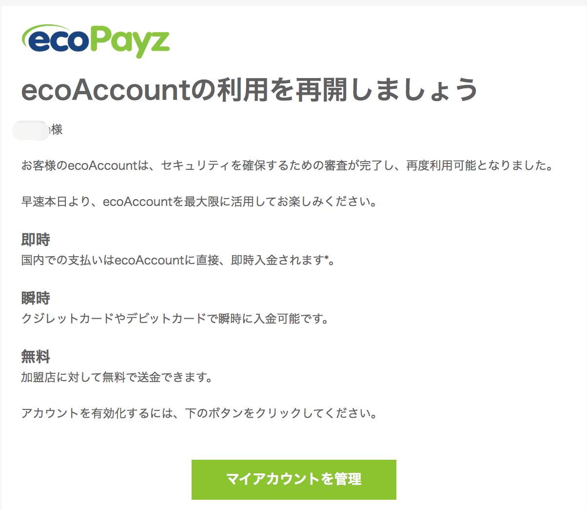ecoPayz(エコペイズ)クレジットカード制限3