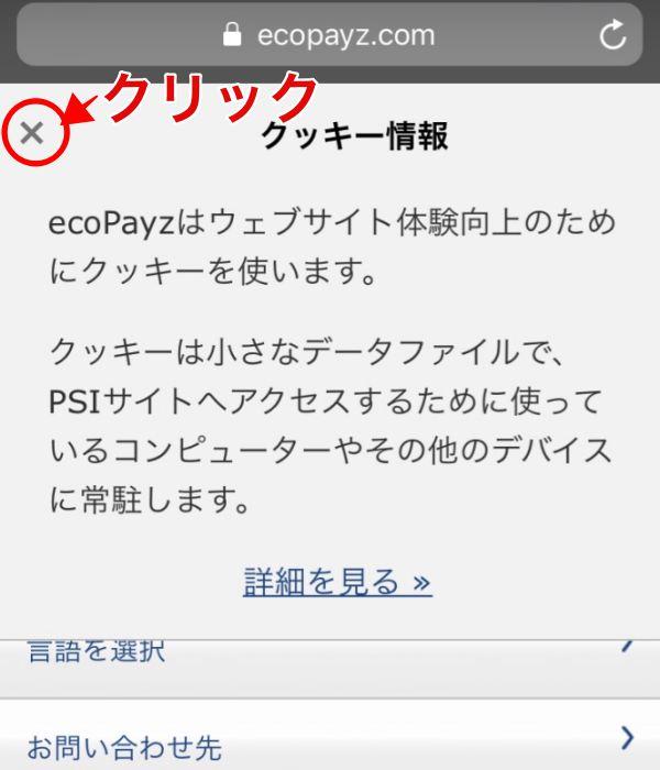 エコペイズ(ecoPayz)モバイル登録1