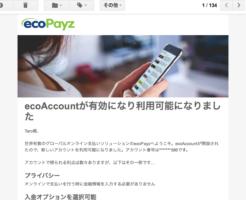 エコペイズ(ecoPayz)登録パソコン5