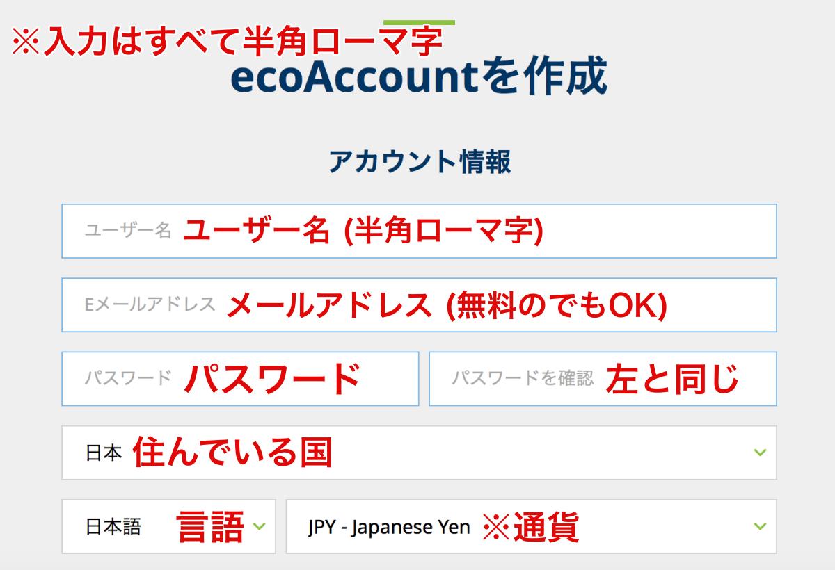 エコペイズ(ecoPayz)登録パソコン2
