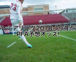 プレミアリーグ2018-19得点王,PFA予想オッズ!ハリーケイン,サラーは!?