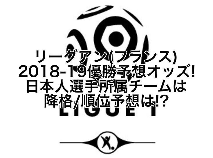 リーグアン(フランス)2018-19優勝予想オッズ!降格,順位予想は!?