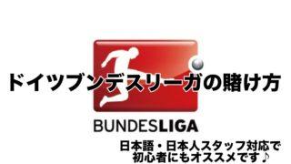 ドイツブンデスリーガの賭け方!海外TOTOより100倍楽しいブックメーカー買い方