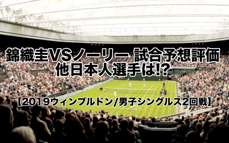 錦織圭VSノーリー試合予想:評価!他日本人選手は!?【2019ウィンブルドン:男子シングルス2回戦】