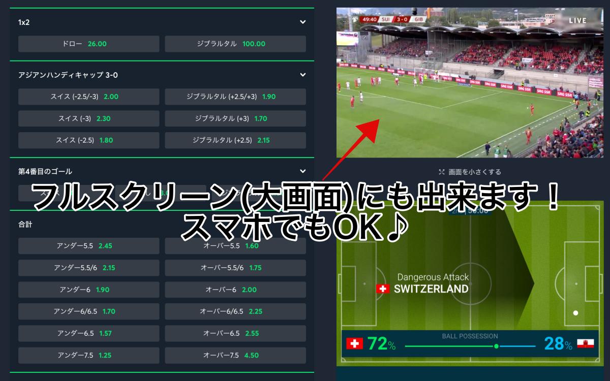 EURO2020予選生中継ネット無料動画:sportsbetio ライブストリーミング