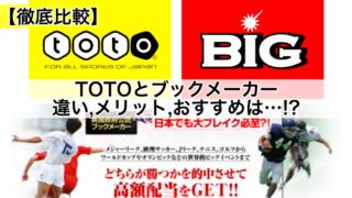【徹底比較】TOTOとブックメーカー!違い,メリット,おすすめは…!?