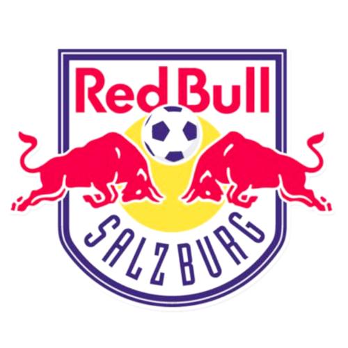 ザルツブルク・オーストリアサッカーチーム・南野拓実・奥川雅也
