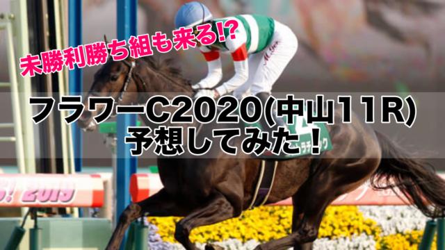 フラワーC2020(中山11R)予想!未勝利勝ち組もデータ的には充分あり