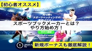 【初心者】スポーツブックメーカーやり方始め方!