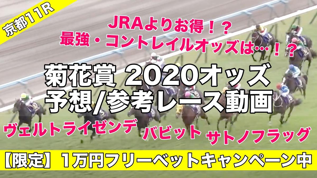 菊花賞2020オッズ発表(予想&過去参考レース動画)コントレイル無敗三冠へ評価は…